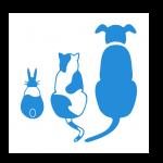 Kingsteignton Veterinary Group, Kingsteignton