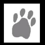 Eaton Veterinary Practice