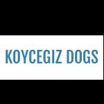 Koycegiz Dog Shelter