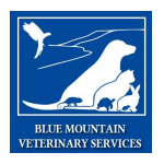 Blue Mountain Veterinary Services