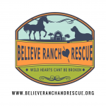 Believe Ranch and Rescue