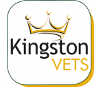Kingston Veterinary Group, Park Street